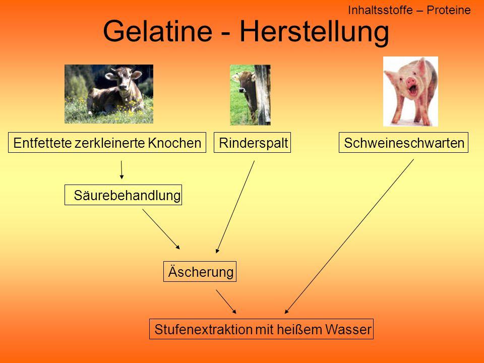 Gelatine - Herstellung Inhaltsstoffe – Proteine Schweineschwarten Rinderspalt Säurebehandlung Entfettete zerkleinerte Knochen Äscherung Stufenextraktion mit heißem Wasser