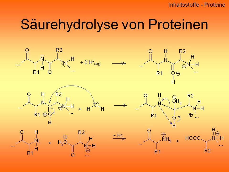Säurehydrolyse von Proteinen Inhaltsstoffe - Proteine + 2 H + (aq) + + ~ H + +