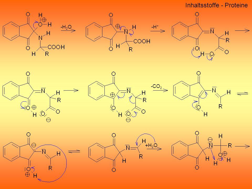 -H 2 O -H + -CO 2 +H 2 O Inhaltsstoffe - Proteine