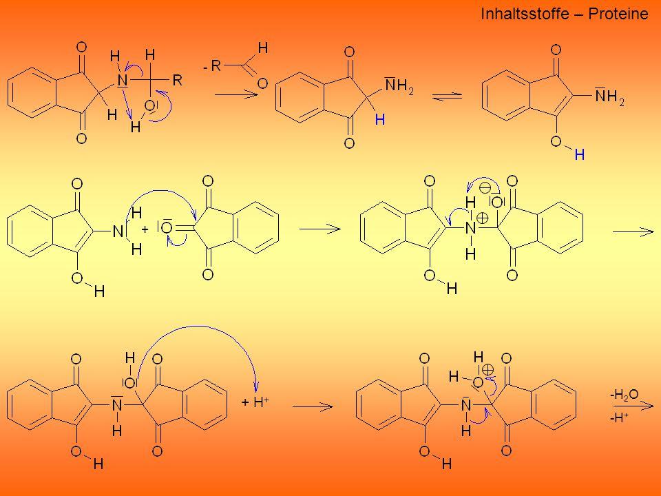 - + H + -H 2 O -H + Inhaltsstoffe – Proteine +