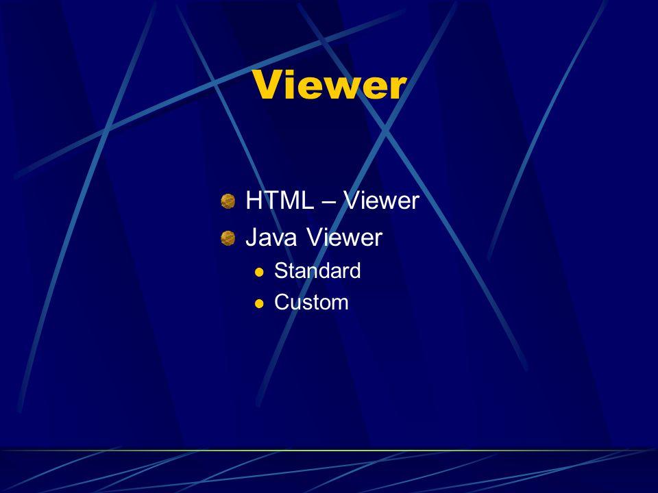 Designer – was ist das? erst muss man sich entscheiden, ob man HTML Viewer, Java Custom oder Java Standard benutzen will Aufbau der Web Seite in Arc I