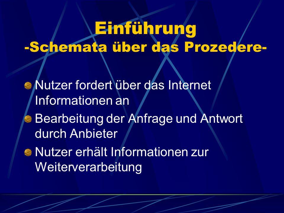 Einführung -Schemata über das Prozedere- Nutzer fordert über das Internet Informationen an Bearbeitung der Anfrage und Antwort durch Anbieter Nutzer erhält Informationen zur Weiterverarbeitung