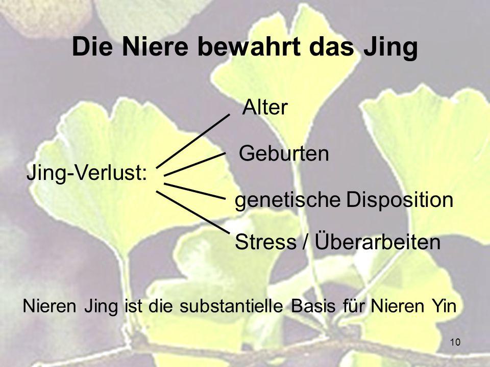 10 Die Niere bewahrt das Jing Jing-Verlust: Alter Geburten genetische Disposition Stress / Überarbeiten Nieren Jing ist die substantielle Basis für Ni
