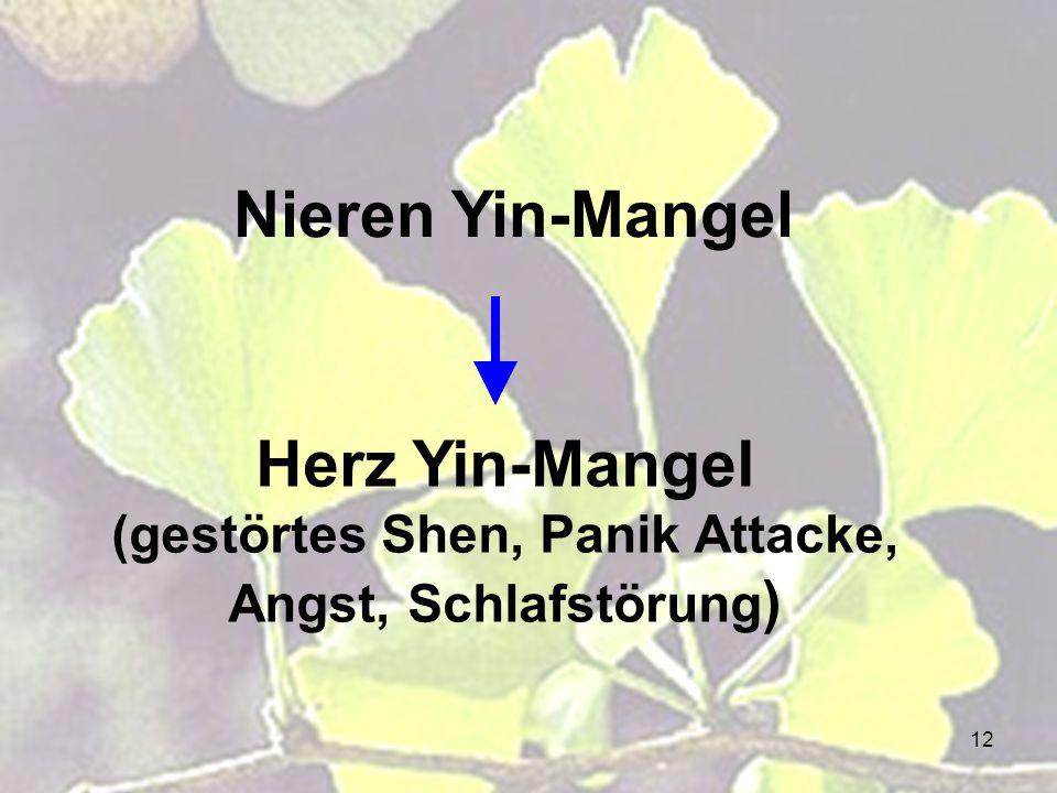 12 Herz Yin-Mangel (gestörtes Shen, Panik Attacke, Angst, Schlafstörung ) Nieren Yin-Mangel