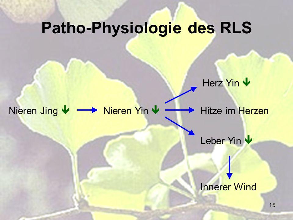 15 Patho-Physiologie des RLS Nieren Jing  Nieren Yin  Herz Yin  Hitze im Herzen Leber Yin  Innerer Wind