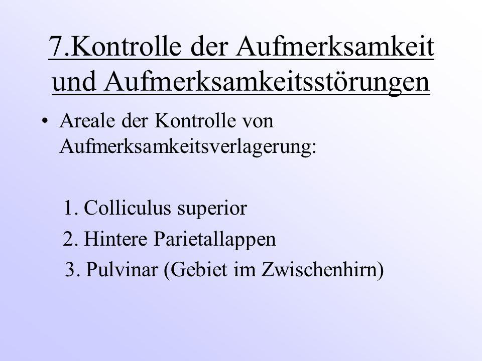 7.Kontrolle der Aufmerksamkeit und Aufmerksamkeitsstörungen Areale der Kontrolle von Aufmerksamkeitsverlagerung: 1. Colliculus superior 2. Hintere Par