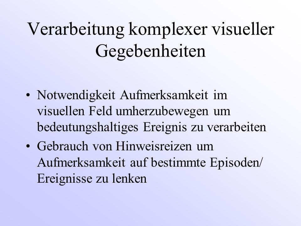 Verarbeitung komplexer visueller Gegebenheiten Notwendigkeit Aufmerksamkeit im visuellen Feld umherzubewegen um bedeutungshaltiges Ereignis zu verarbeiten Gebrauch von Hinweisreizen um Aufmerksamkeit auf bestimmte Episoden/ Ereignisse zu lenken