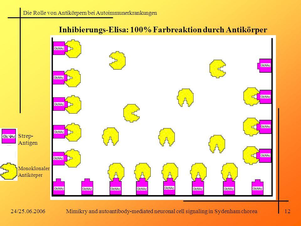 Die Rolle von Antikörpern bei Autoimmunerkrankungen 24/25.06.2006Mimikry and autoantibody-mediated neuronal cell signaling in Sydenham chorea12 Inhibierungs-Elisa: 100% Farbreaktion durch Antikörper Strep- Antigen Monoklonaler Antikörper