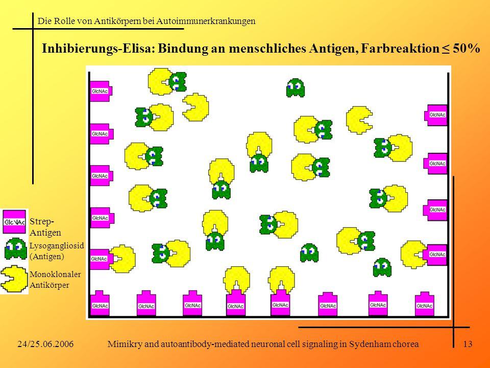 Die Rolle von Antikörpern bei Autoimmunerkrankungen 24/25.06.2006Mimikry and autoantibody-mediated neuronal cell signaling in Sydenham chorea13 Inhibi