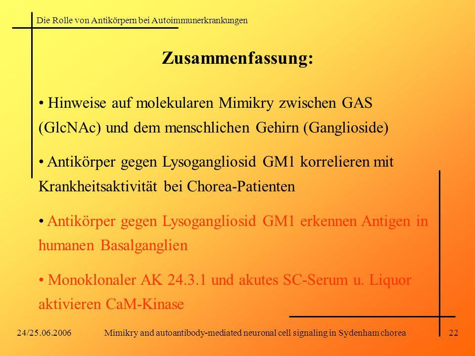 Die Rolle von Antikörpern bei Autoimmunerkrankungen 24/25.06.2006Mimikry and autoantibody-mediated neuronal cell signaling in Sydenham chorea22 Zusammenfassung: Hinweise auf molekularen Mimikry zwischen GAS (GlcNAc) und dem menschlichen Gehirn (Ganglioside) Antikörper gegen Lysogangliosid GM1 korrelieren mit Krankheitsaktivität bei Chorea-Patienten Antikörper gegen Lysogangliosid GM1 erkennen Antigen in humanen Basalganglien Monoklonaler AK 24.3.1 und akutes SC-Serum u.