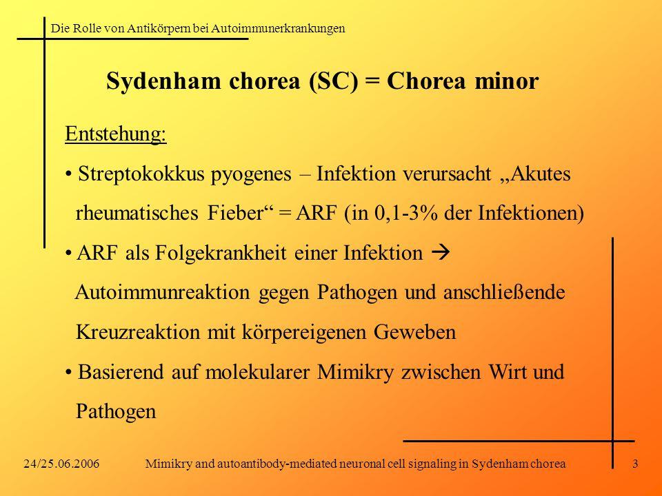 Die Rolle von Antikörpern bei Autoimmunerkrankungen 24/25.06.2006Mimikry and autoantibody-mediated neuronal cell signaling in Sydenham chorea3 Sydenha