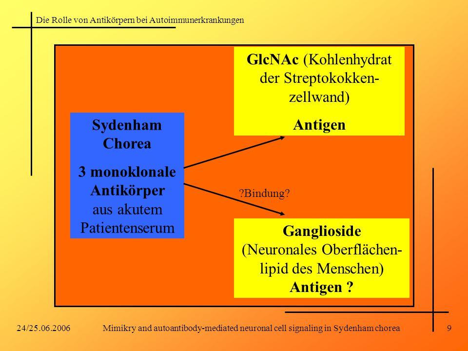 Die Rolle von Antikörpern bei Autoimmunerkrankungen 24/25.06.2006Mimikry and autoantibody-mediated neuronal cell signaling in Sydenham chorea9 Sydenha
