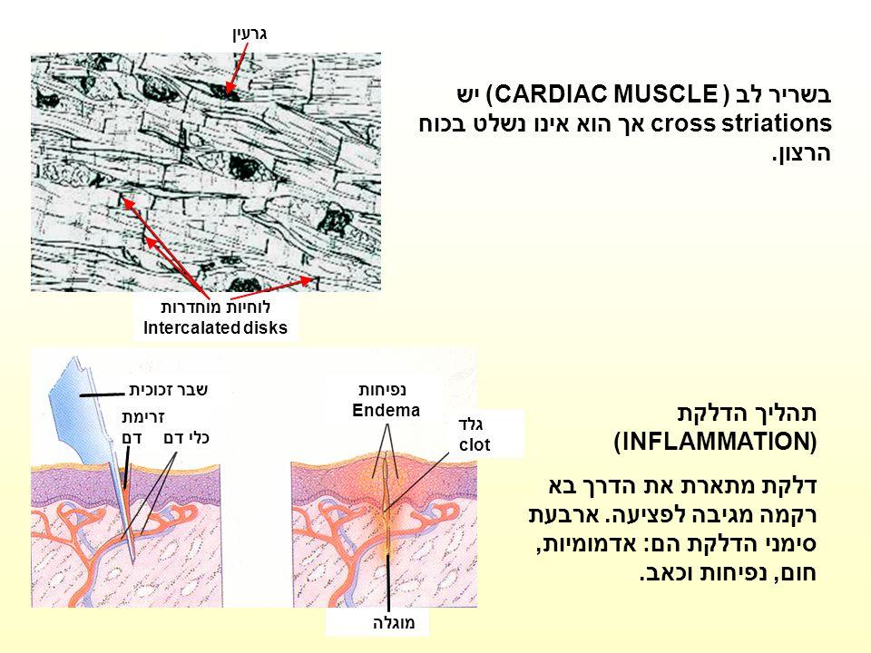 לוחיות מוחדרות Intercalated disks גרעין בשריר לב (CARDIAC MUSCLE ) יש cross striations אך הוא אינו נשלט בכוח הרצון. גלד clot נפיחות Endema מוגלה שבר ז