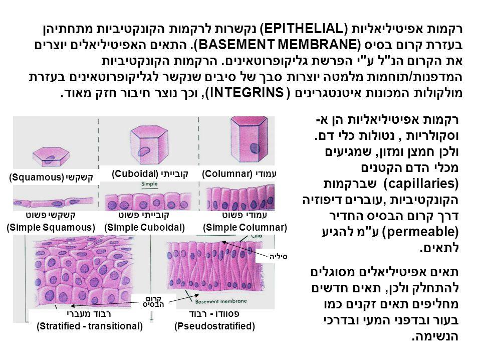 רקמות אפיטיליאליות שהן בעלות קרום (Membranous epithelial tissues) מסווגות בהתאם לצורת התאים ואופן הריבוד שלהם.