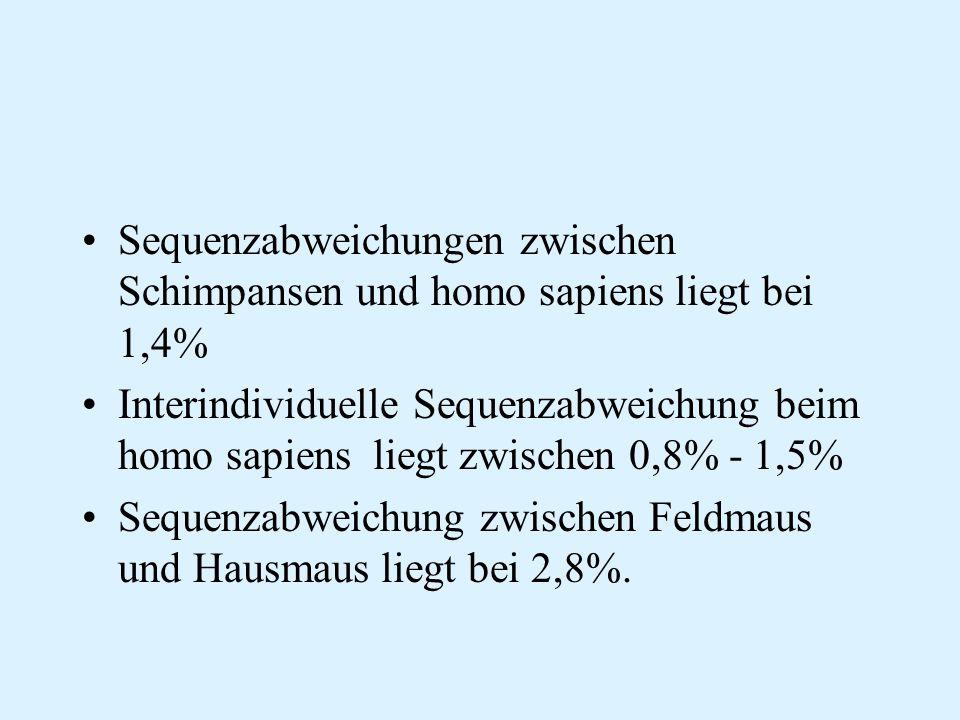 Sequenzabweichungen zwischen Schimpansen und homo sapiens liegt bei 1,4% Interindividuelle Sequenzabweichung beim homo sapiens liegt zwischen 0,8% - 1
