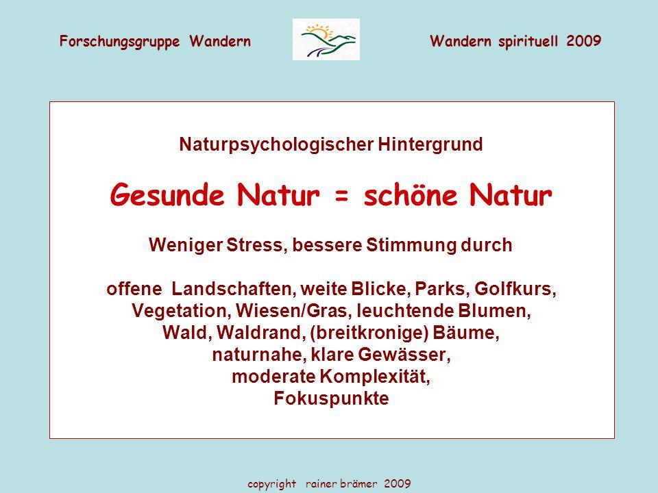 Forschungsgruppe WandernWandern spirituell 2009 copyright rainer brämer 2009 Naturpsychologischer Hintergrund Gesunde Natur = schöne Natur Weniger Str