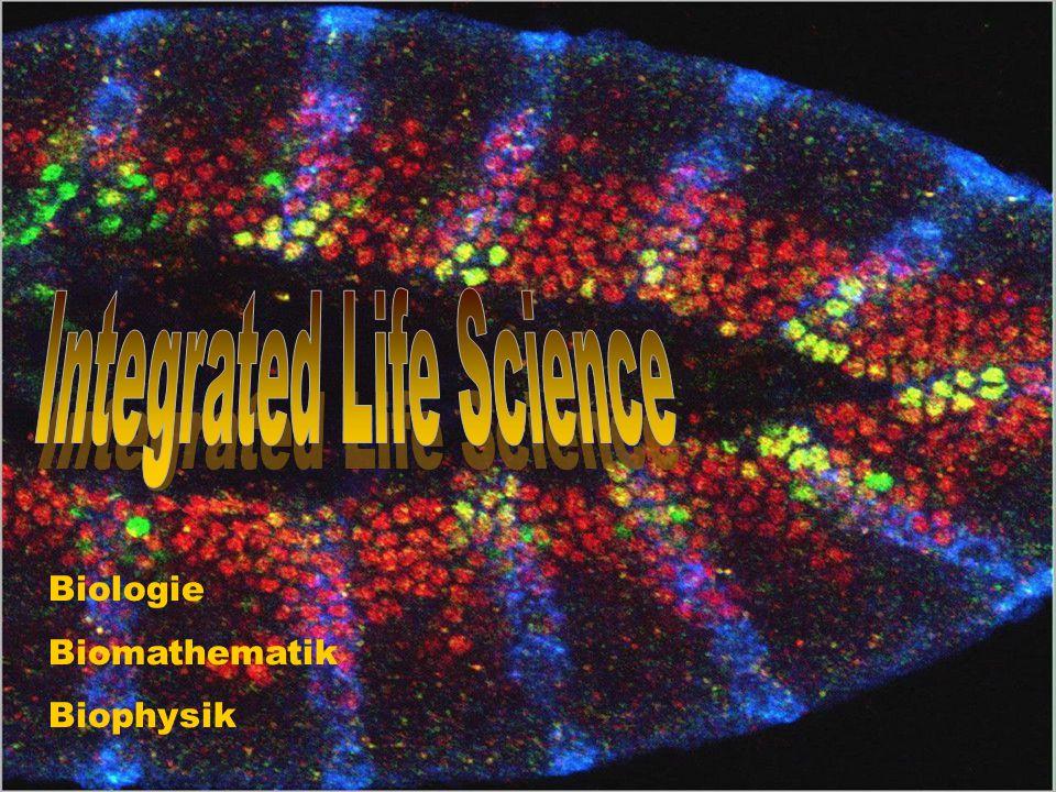 Biologie Biomathematik Biophysik