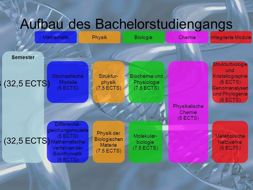 Aufbau des Bachelorstudiengangs MathematikIntegrierte ModuleChemieBiologiePhysik Stochastische Modelle (5 ECTS) Biochemie und Physiologie (7,5 ECTS) D