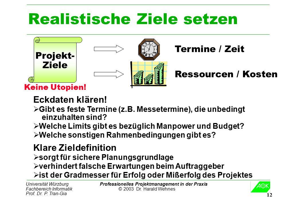 Universität Würzburg Professionelles Projektmanagement in der Praxis Fachbereich Informatik © 2003 Dr. Harald Wehnes Prof. Dr. P. Tran-Gia 12 Realisti
