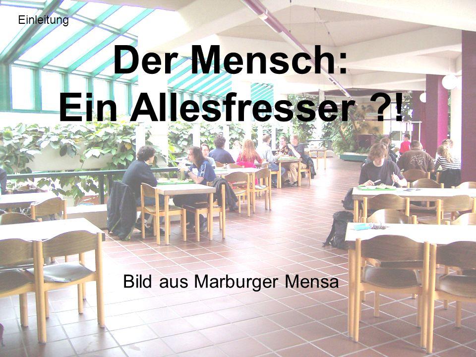 Der Mensch: Ein Allesfresser ?! Bild aus Marburger Mensa Einleitung