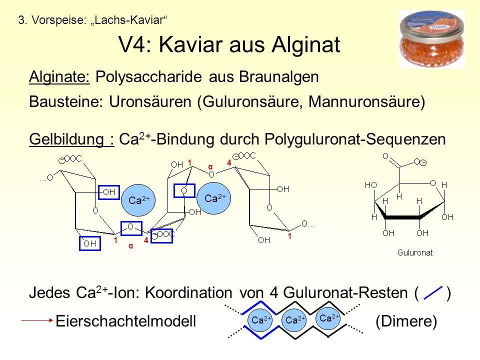 "V4: Kaviar aus Alginat 3. Vorspeise: ""Lachs-Kaviar"" Alginate: Polysaccharide aus Braunalgen Bausteine: Uronsäuren (Guluronsäure, Mannuronsäure) Gelbil"