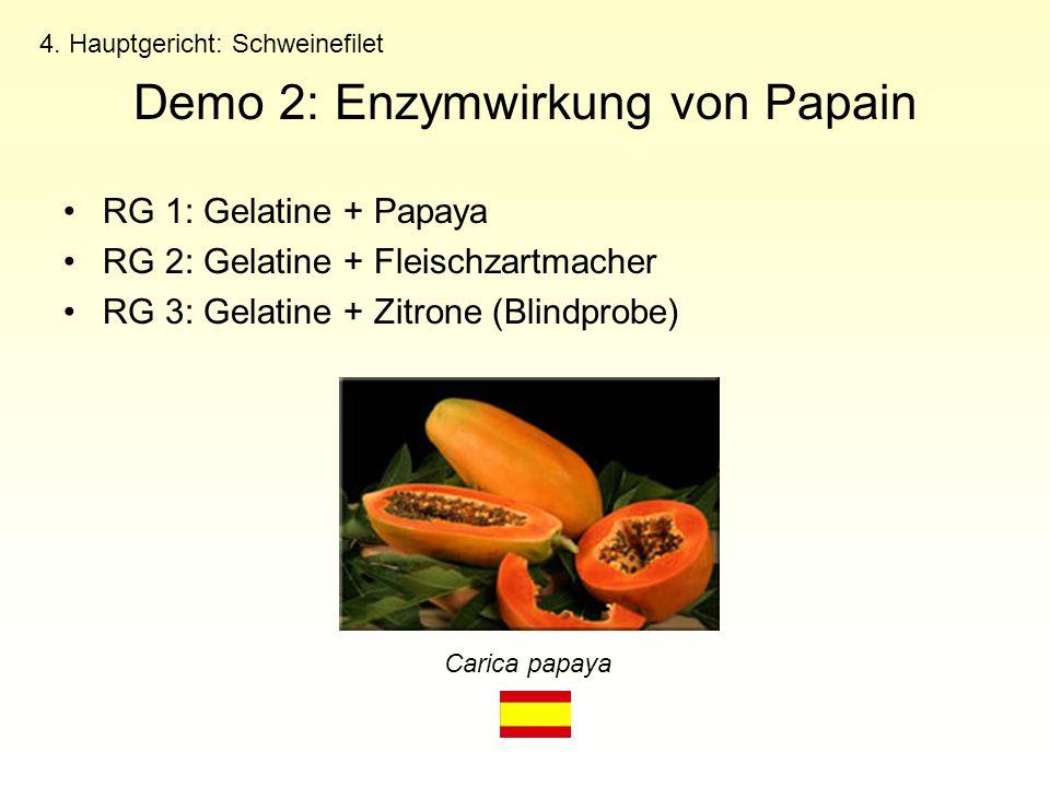 RG 1: Gelatine + Papaya RG 2: Gelatine + Fleischzartmacher RG 3: Gelatine + Zitrone (Blindprobe) 4. Hauptgericht: Schweinefilet Demo 2: Enzymwirkung v