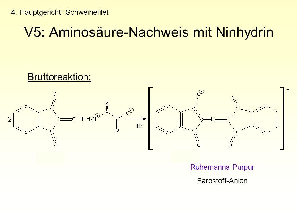 4. Hauptgericht: Schweinefilet V5: Aminosäure-Nachweis mit Ninhydrin Ruhemanns Purpur Farbstoff-Anion Bruttoreaktion: 2 - -H +