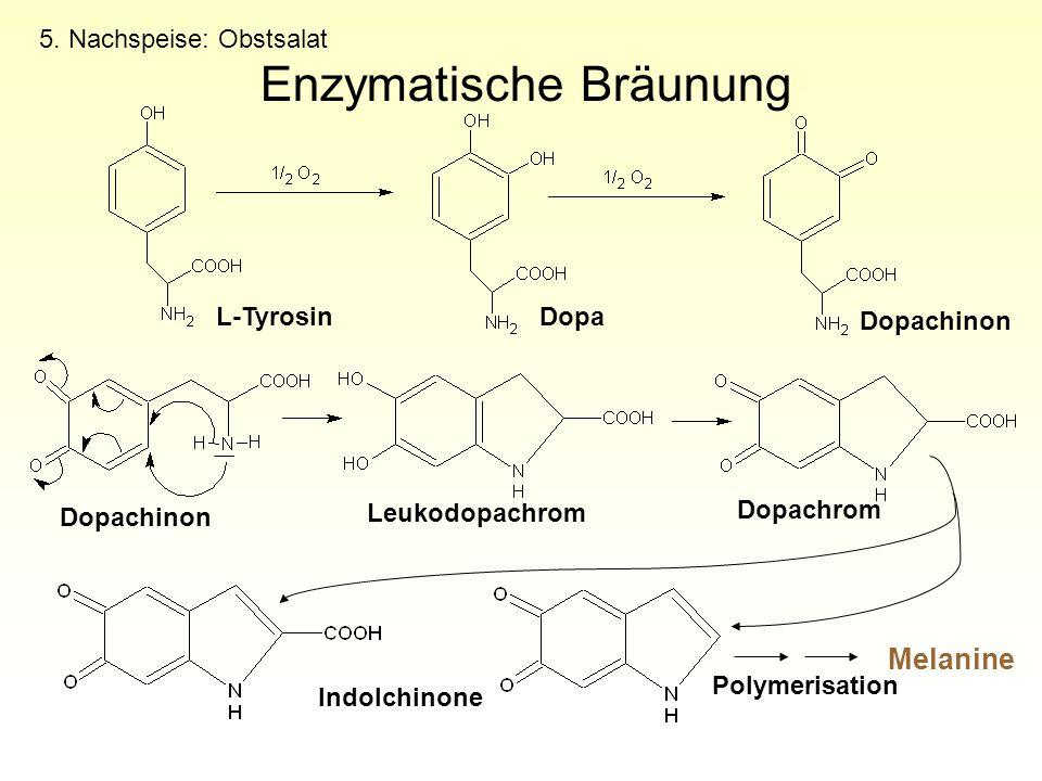5. Nachspeise: Obstsalat Enzymatische Bräunung Melanine L-TyrosinDopa Dopachinon Leukodopachrom Dopachrom Polymerisation Indolchinone