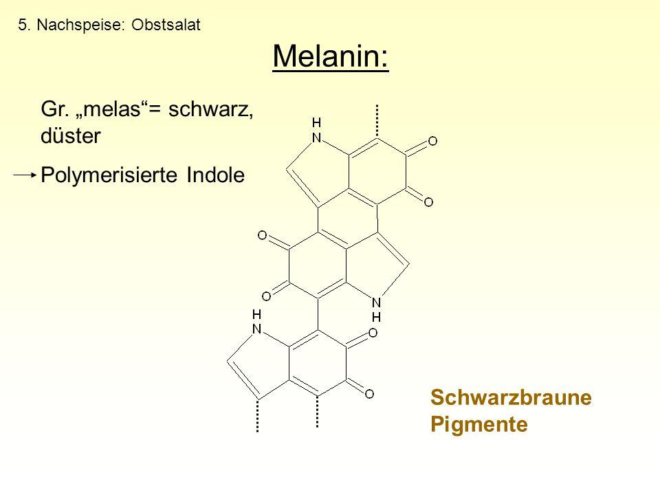 """Melanin: Schwarzbraune Pigmente Gr. """"melas""""= schwarz, düster Polymerisierte Indole 5. Nachspeise: Obstsalat"""