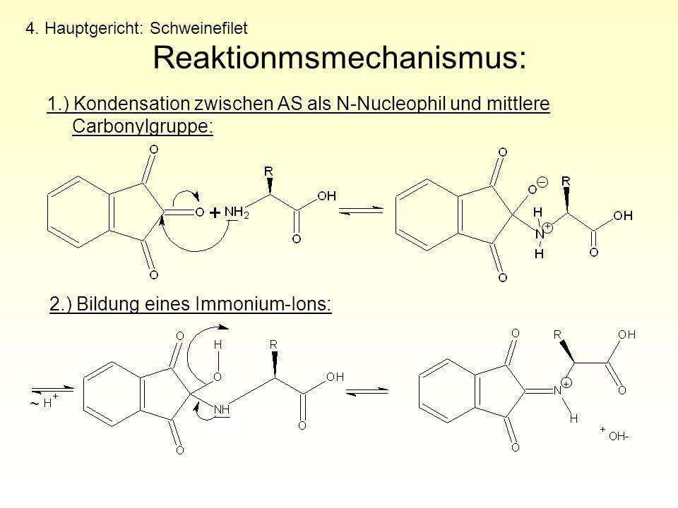 1.) Kondensation zwischen AS als N-Nucleophil und mittlere Carbonylgruppe: 4. Hauptgericht: Schweinefilet Reaktionmsmechanismus: 2.) Bildung eines Imm