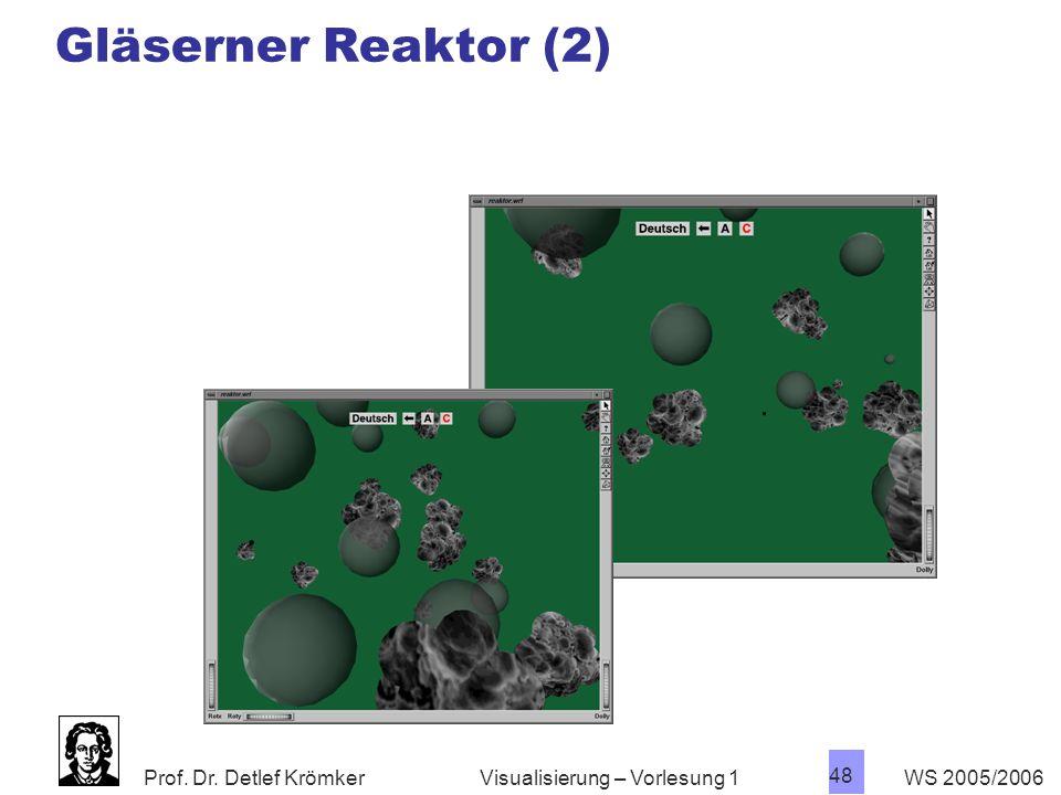 Prof. Dr. Detlef Krömker WS 2005/2006 48 Visualisierung – Vorlesung 1 Gläserner Reaktor (2)