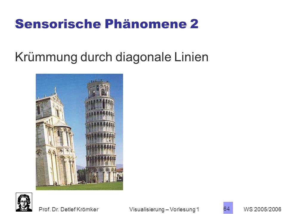 Prof. Dr. Detlef Krömker WS 2005/2006 64 Visualisierung – Vorlesung 1 Sensorische Phänomene 2 Krümmung durch diagonale Linien