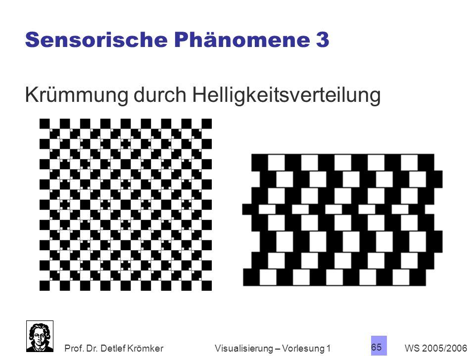 Prof. Dr. Detlef Krömker WS 2005/2006 65 Visualisierung – Vorlesung 1 Sensorische Phänomene 3 Krümmung durch Helligkeitsverteilung