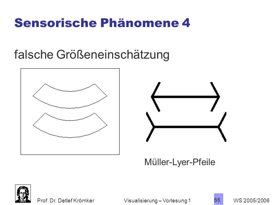 Prof. Dr. Detlef Krömker WS 2005/2006 66 Visualisierung – Vorlesung 1 Sensorische Phänomene 4 falsche Größeneinschätzung Müller-Lyer-Pfeile