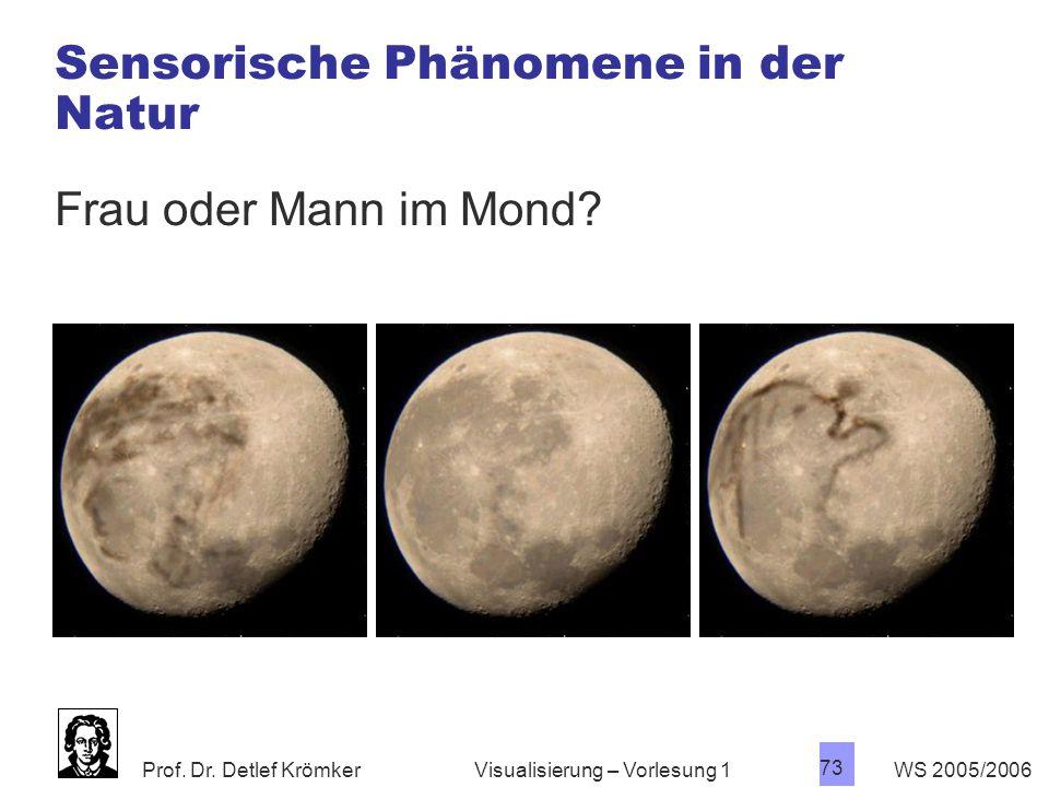Prof. Dr. Detlef Krömker WS 2005/2006 73 Visualisierung – Vorlesung 1 Sensorische Phänomene in der Natur Frau oder Mann im Mond?