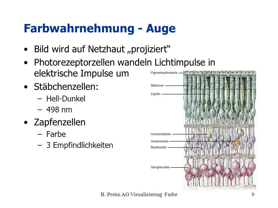 """B. Preim AG Visualisierung Farbe9 Farbwahrnehmung - Auge Bild wird auf Netzhaut """"projiziert"""" Photorezeptorzellen wandeln Lichtimpulse in elektrische I"""
