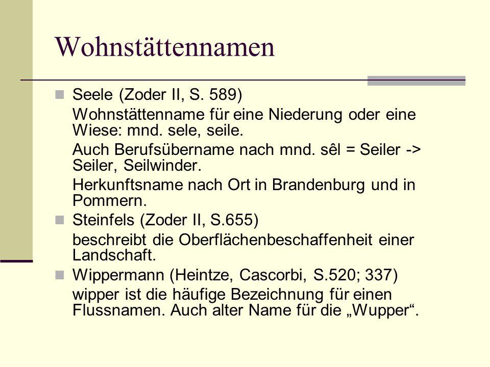 Wohnstättennamen Seele (Zoder II, S. 589) Wohnstättenname für eine Niederung oder eine Wiese: mnd. sele, seile. Auch Berufsübername nach mnd. sêl = Se