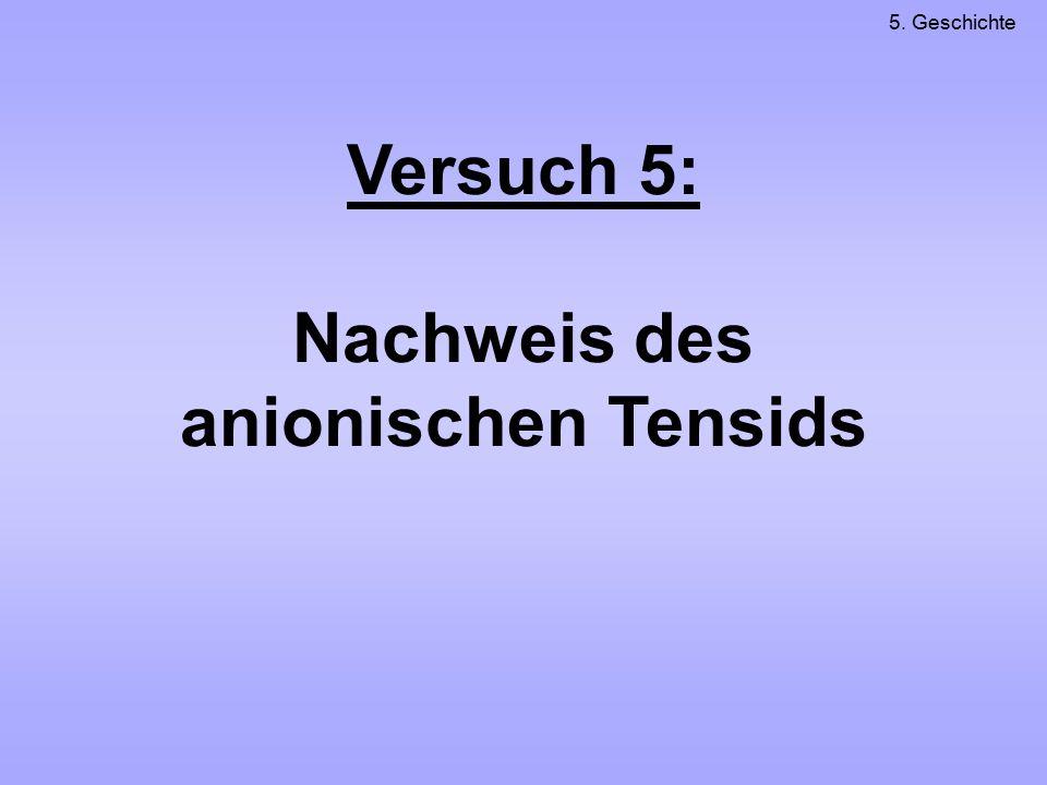 Versuch 5: Nachweis des anionischen Tensids 5. Geschichte