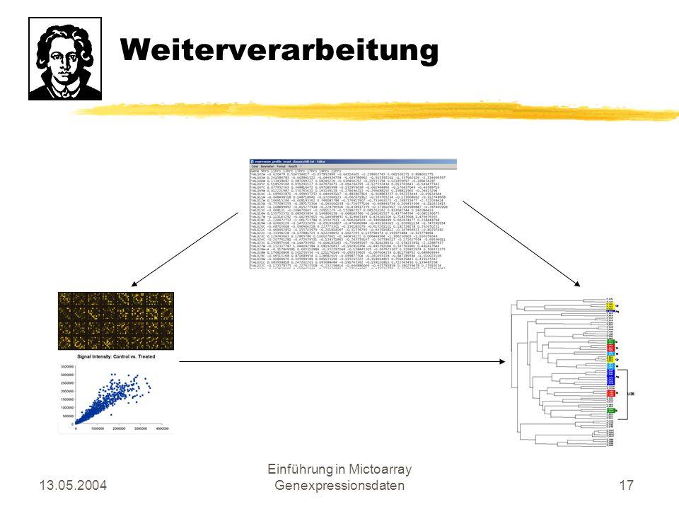13.05.2004 Einführung in Mictoarray Genexpressionsdaten17 Weiterverarbeitung