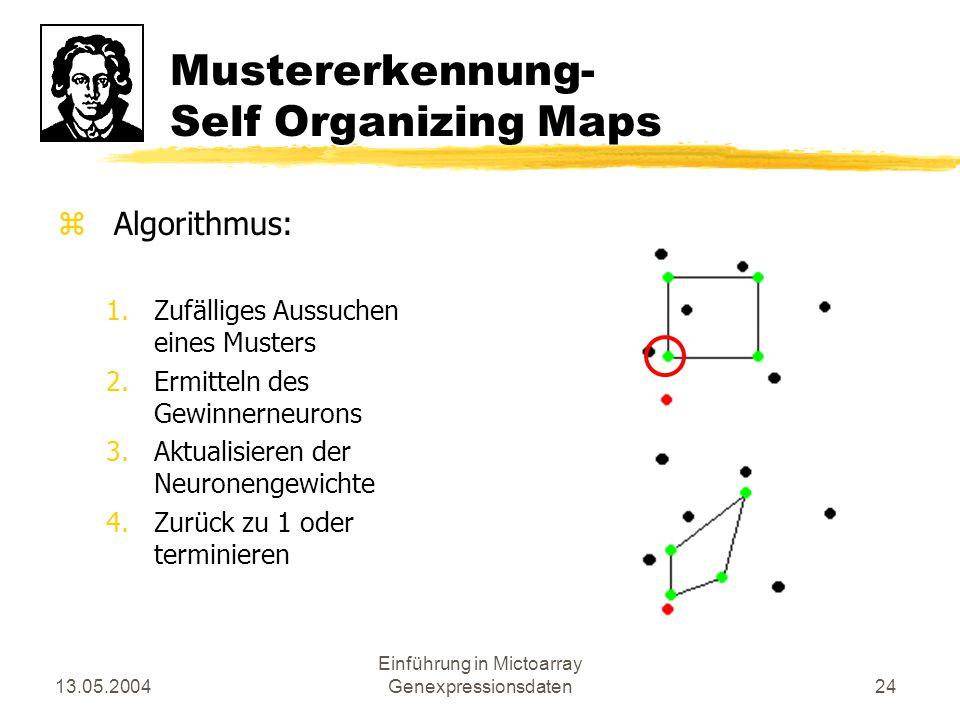 13.05.2004 Einführung in Mictoarray Genexpressionsdaten24 Mustererkennung- Self Organizing Maps zAlgorithmus: 1.Zufälliges Aussuchen eines Musters 2.E