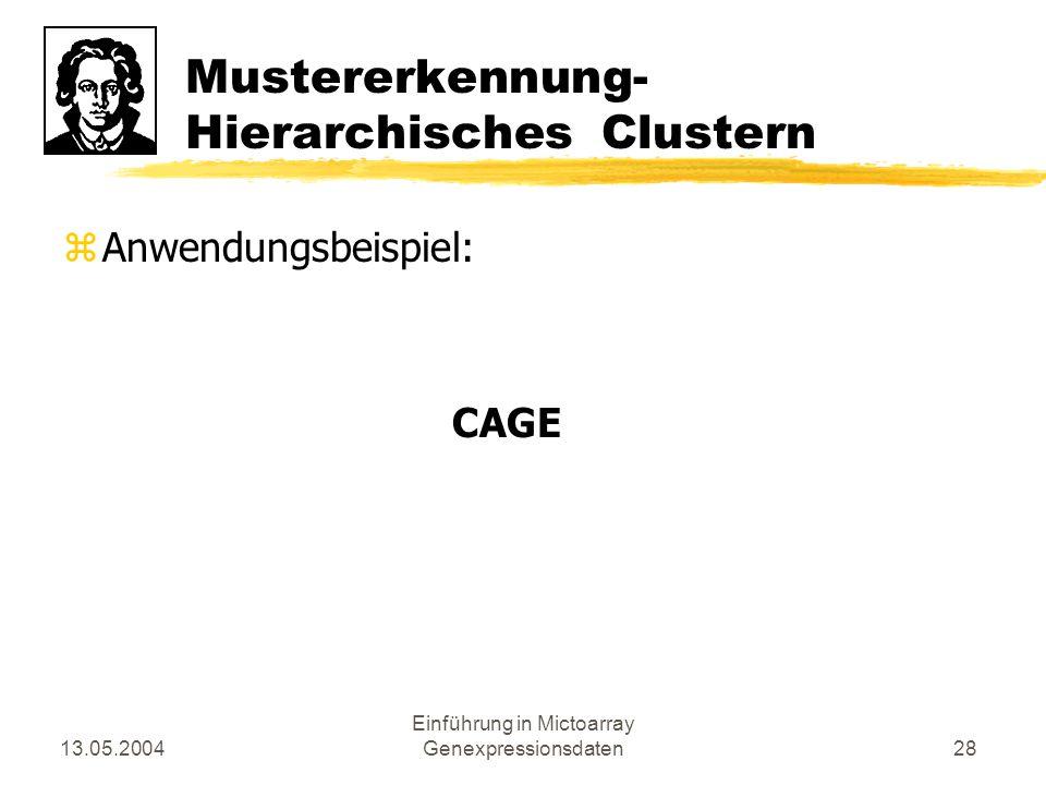 13.05.2004 Einführung in Mictoarray Genexpressionsdaten28 Mustererkennung- Hierarchisches Clustern zAnwendungsbeispiel: CAGE