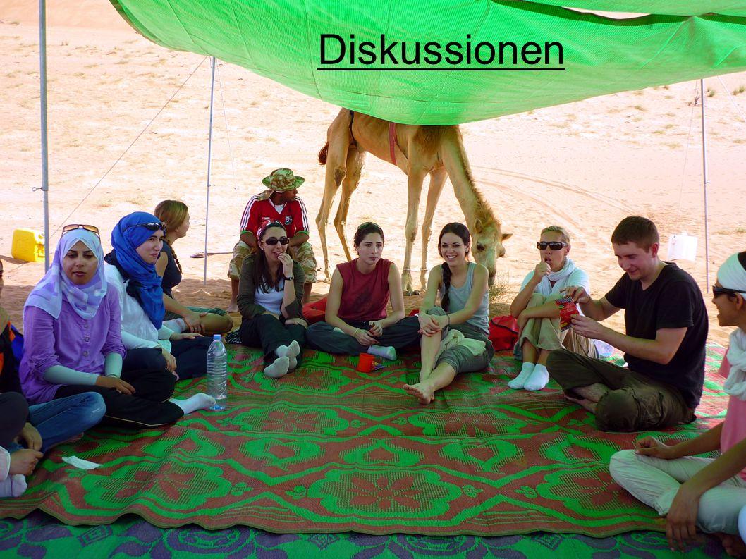 Diskussionen
