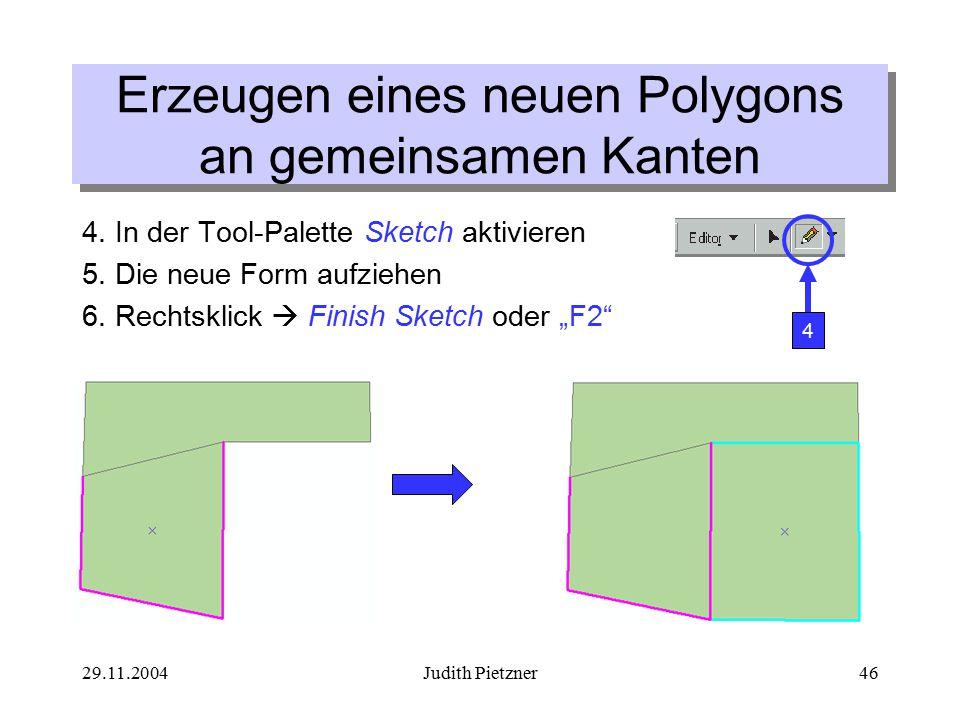 29.11.2004Judith Pietzner46 4. In der Tool-Palette Sketch aktivieren 5.