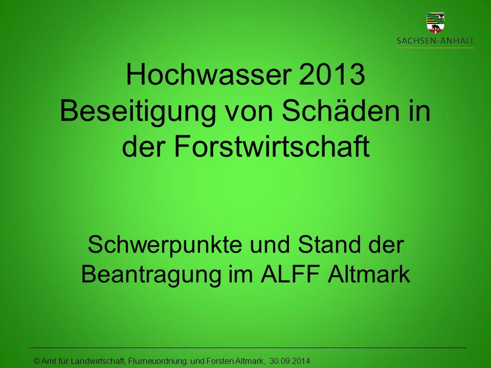 © Amt für Landwirtschaft, Flurneuordnung und Forsten Altmark, 30.09.2014 Hochwasser 2013 Beseitigung von Schäden in der Forstwirtschaft Schwerpunkte und Stand der Beantragung im ALFF Altmark