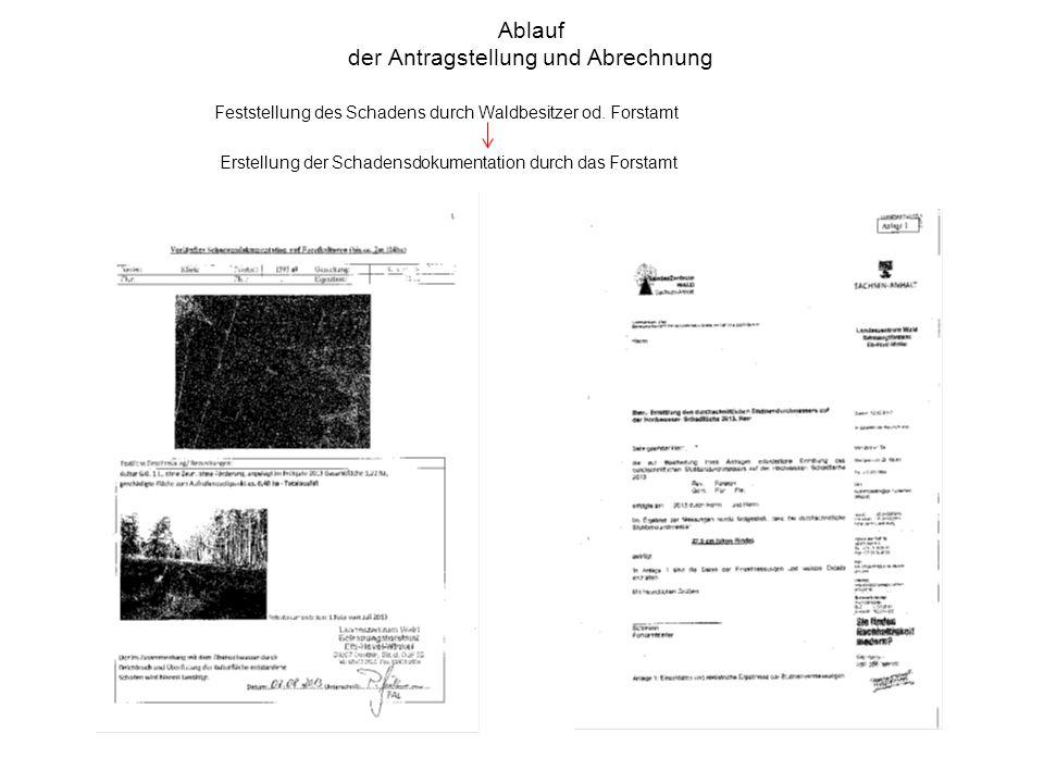 Ablauf der Antragstellung und Abrechnung Feststellung des Schadens durch Waldbesitzer od.