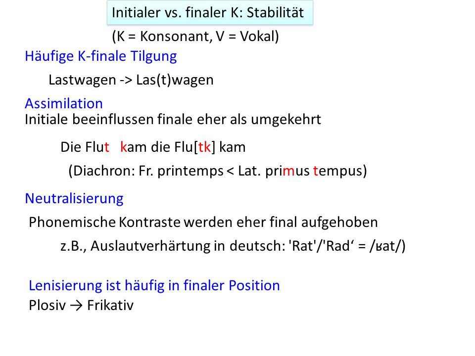 Initialer vs. finaler K: Stabilität Assimilation Neutralisierung Phonemische Kontraste werden eher final aufgehoben z.B., Auslautverhärtung in deutsch