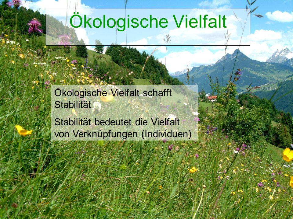 Biozentrum Kärnten Veranstaltung, Ort, Datum Ökologische Vielfalt Ökologische Vielfalt schafft Stabilität Stabilität bedeutet die Vielfalt von Verknüpfungen (Individuen)