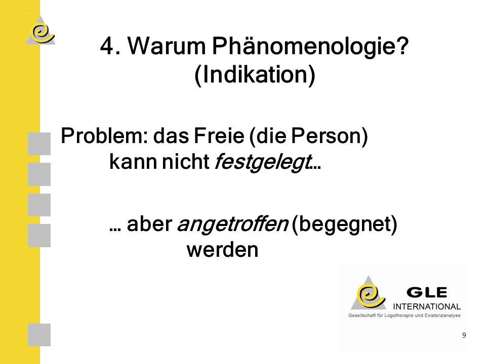 4.Warum Phänomenologie.