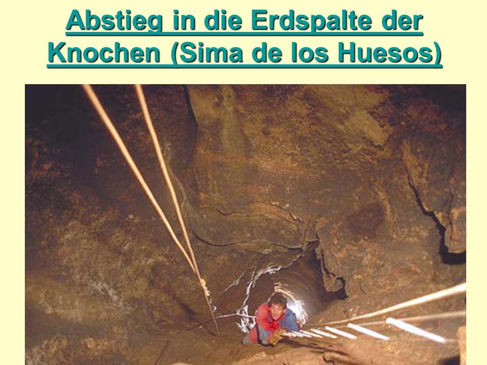 Abstieg in die Erdspalte der Knochen (Sima de los Huesos)