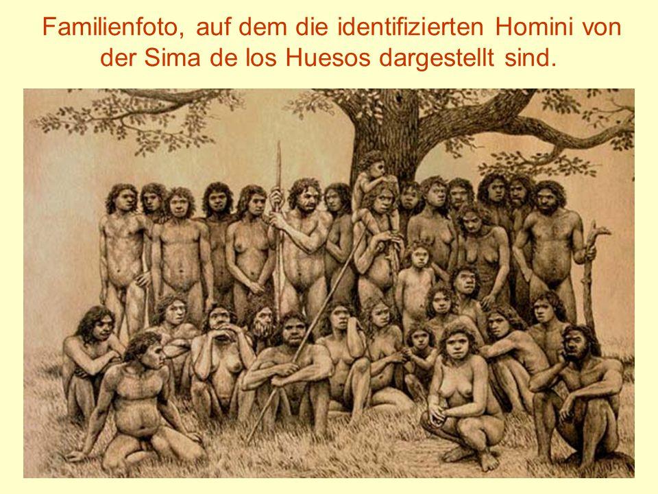 Familienfoto, auf dem die identifizierten Homini von der Sima de los Huesos dargestellt sind.